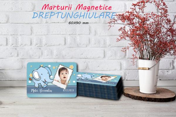 Animalute B 002 600x400 Marturie Magnetica dreptunghiulara baiat - Elefantel fotomarturii-magnetice