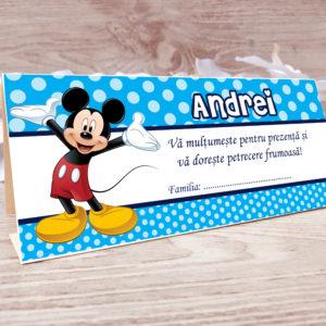 P029 300x300 Plicuri de bani Model Mickey nr.3 plicuri-de-bani-botez