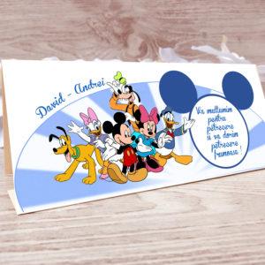 P045 300x300 Plicuri de bani Model Disney plicuri-de-bani-botez