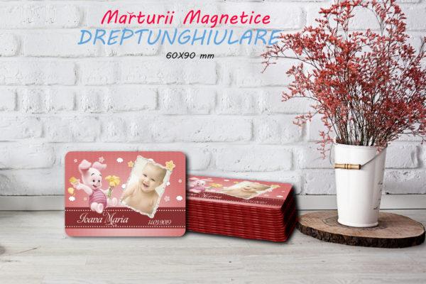 animalute F 004 600x400 Marturie Magnetica dreptunghiulara fetita fotomarturii-magnetice
