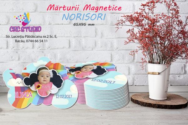 norisori 600x400 Marturie Magnetica Norisor fotomarturii-magnetice
