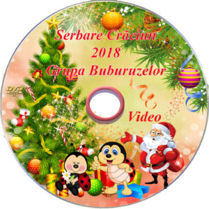 DVD VIDEO 300x300 Inscripționare DVD/CD dvd-cd-print